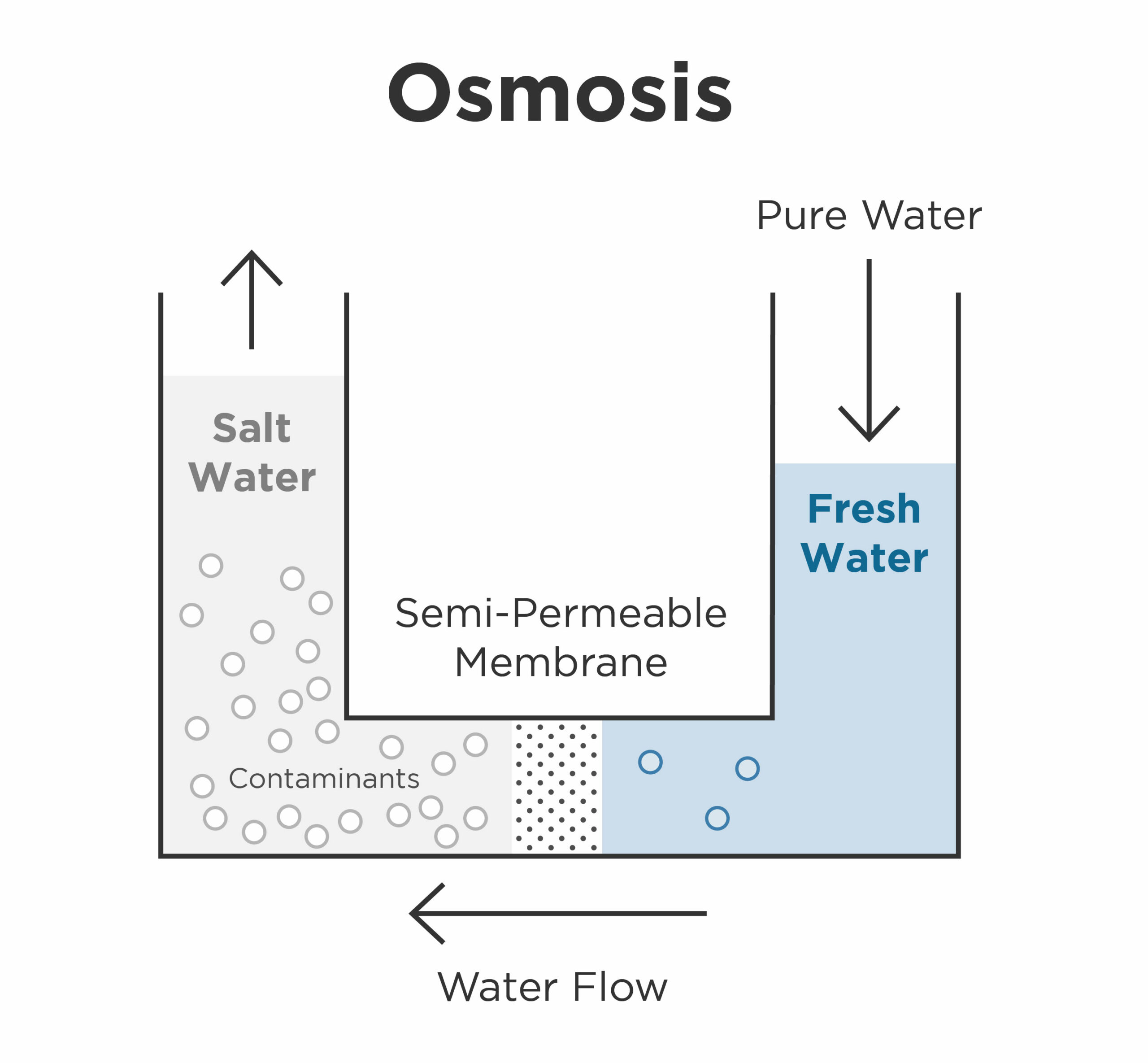 graphic - chart of osmosis